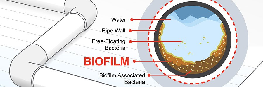 How CPVC Better Resists Biofilm Formation than Other Piping Materials [Infographic]